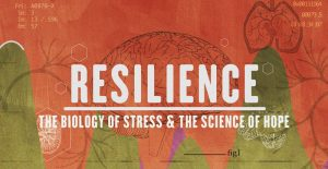 Resilience-image-01